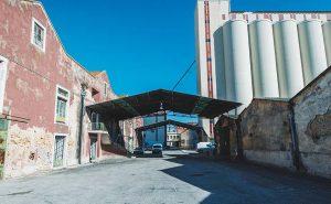 Lisboa Dance Festival: Horários e informações úteis