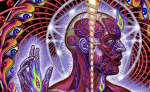 alex grey tool artwork