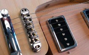 fern-guitars-fern-phoenix header