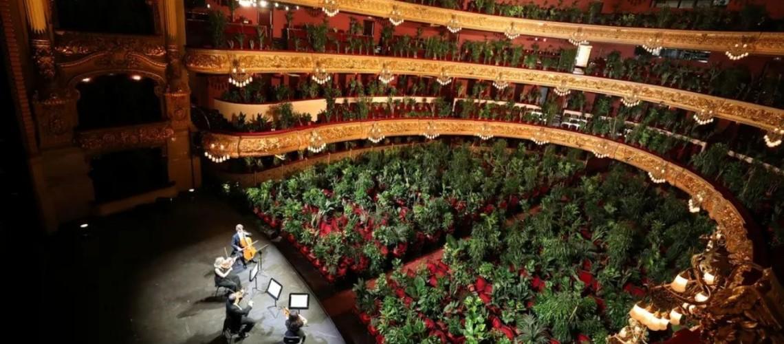 Grande Teatre del Liceu de Barcelona Reabre com Sala Esgotada por Plantas