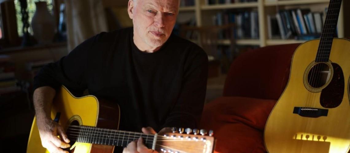Martin D-35 David Gilmour